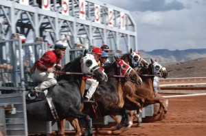 Dixie Downs Horse Race